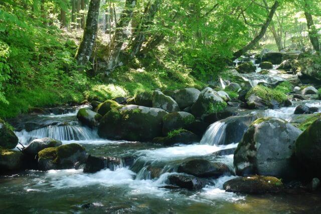 水の甘さと産地との関連性